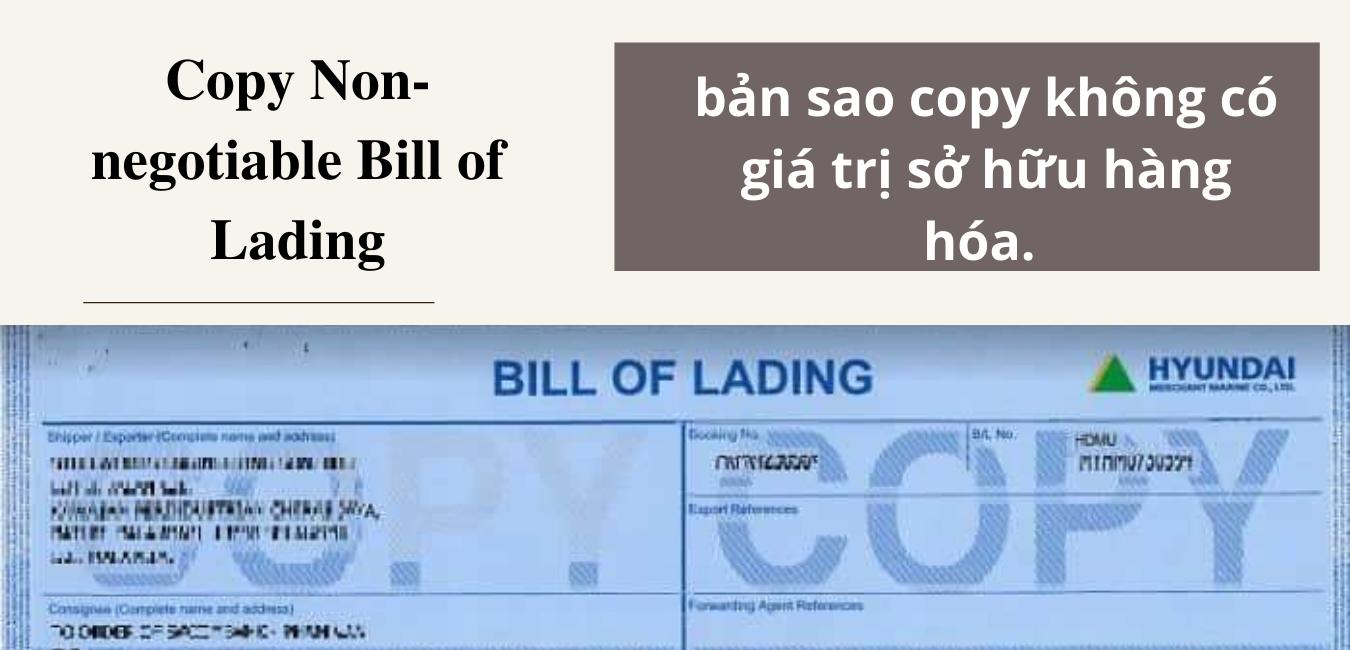 Cách Phân Biệt Vận Đơn Gốc Và Copy - non negotiable Bill of Lading